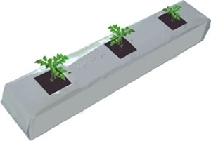 Picture of Coconut Peat Grow Bags